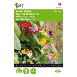 Klimplanten mengsel éénjarig