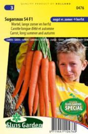 Zomerwortel 'Sugarsnax 54 F1', Daucus carota sativus