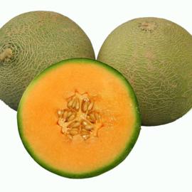 Suikermeloen 'Pixie F1', Cucumis melo
