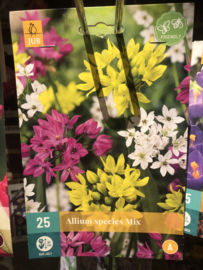 Allium species Mix