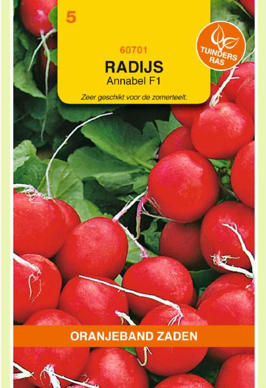 Radijs 'Annabel F1', Raphanus sativus var sativus