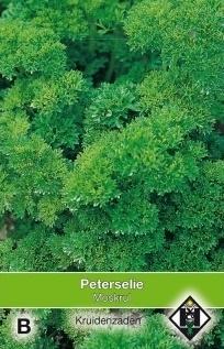 Peterselie moskrul, Petroselinum crispum var. crispum