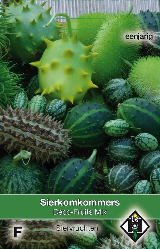 Sierkomkommer Deco fruits mix Cucummis