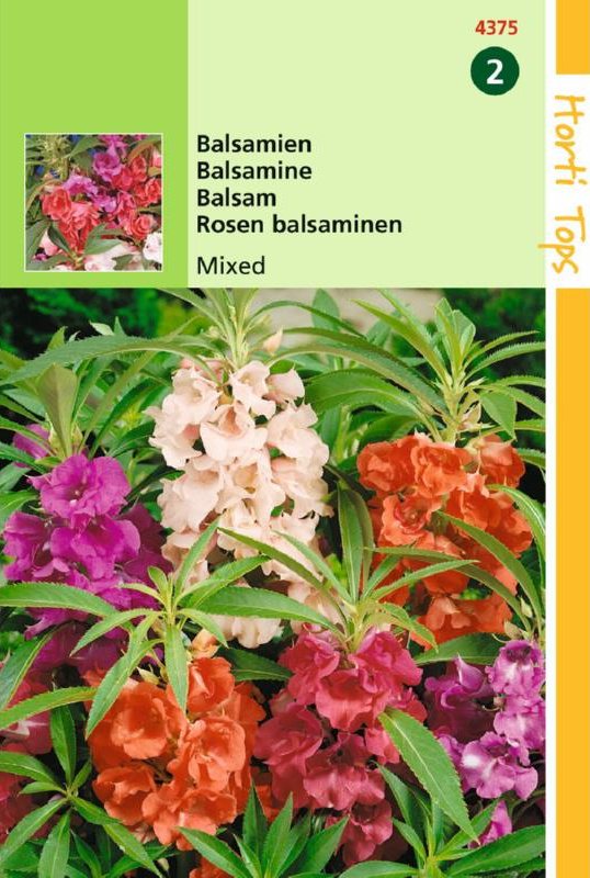 Impatiens balsamina Camelia bloemig gemengd, Balsamien