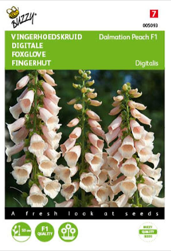 Digitalis purpurea 'Dalmation Peach F1', Vingerhoedskruid
