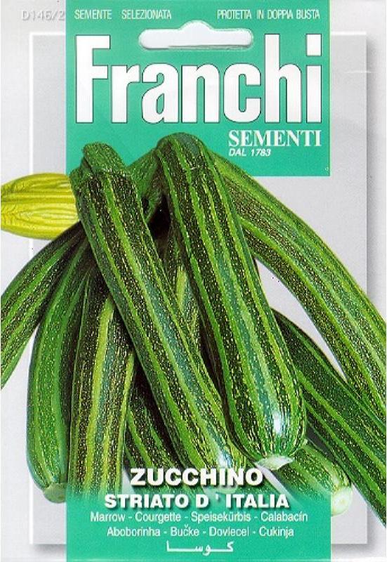 Courgette 'Striato d'Italia', Cucurbita pepo