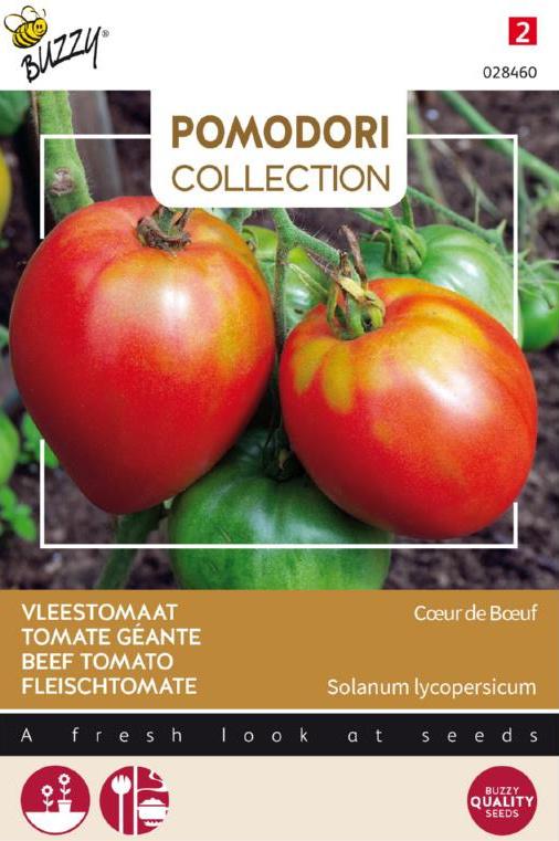 Tomaat vleestomaat 'Cuor di Bue', Solanum lycopersicum