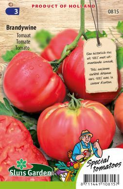 Tomaat vleestomaat 'Brandywine', Solanum lycopersicum