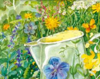 Ouderwetse bloemenweide