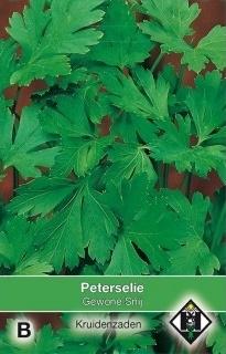 Peterselie gewone snij, Petroselinum crispum