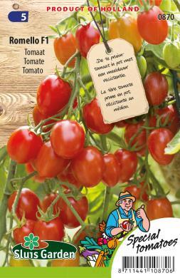Roma tomaat pot 'Romello F1', Solanum lycopersicum