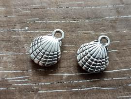 Schelp zilver/5 stuks
