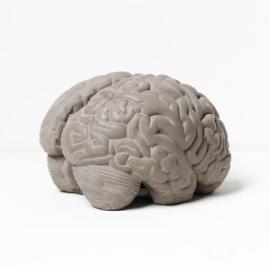 Betonnen Brein Boekensteun - Grey Matters Lyon Beton