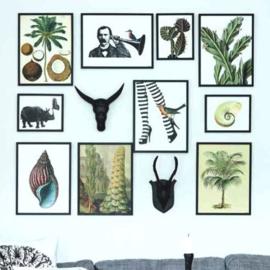 Vanilla Fly Posters - bekijk de uitgebreide poster collectie