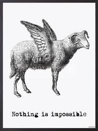 Vanilla Fly Poster - Nothing is impossible - 20x25 cm