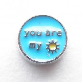MC051 You are my Sunshine