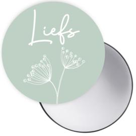 Spiegeltje met tekst 'Liefs' in mint groen met paardenbloem