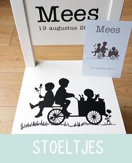 https://www.babyenkidskado.nl/c-3327948/geboorte-stoeltjes/