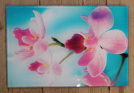 Wanddecoratoe orchideeën
