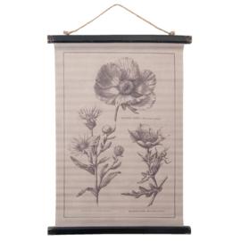 Wandkaart botanisch (Clayre & Eef)
