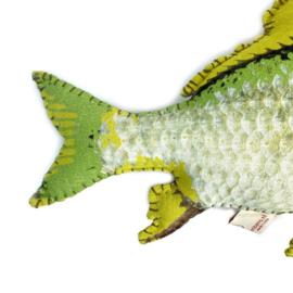 kussen vis