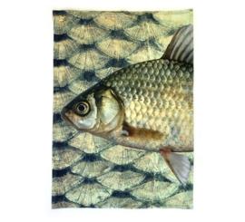 set theedoeken vis imbarro