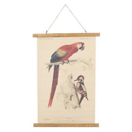 Wandkaart papegaai en specht (Clayre & Eef)