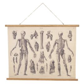 Wandkaart linnen anatomie (Clayre & Eef)