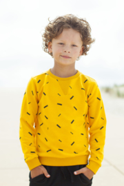 Moodstreet Boys Sweater aop Skate - Dark Yellow