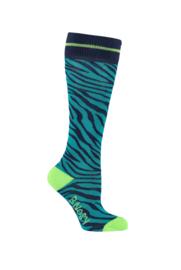 B.Nosy socks with Zebra intarsia - Lagoon Zebra