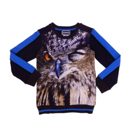 Legends22 Sweater Owl