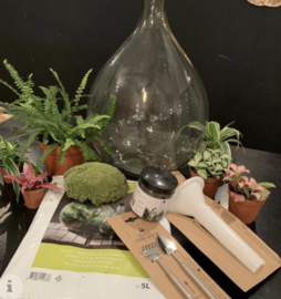Workshop Ecosysteem
