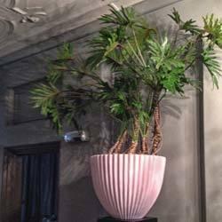 Planten door Floribundus in Zaandam