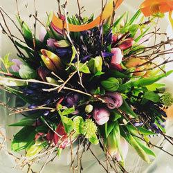 Bijzondere bos bloemen van Floribundus in Zaandam