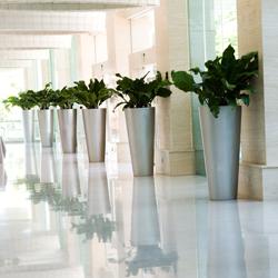 Planten in het bedrijf - bedrijfsbeplanting - Zaanstad