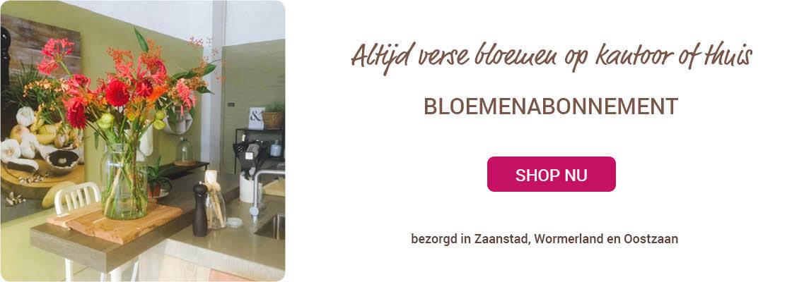 Bloemenabonnement Zaandam Wormerland Oostzaan Foribundus