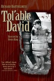 Nr. H6038 -- Super 8 de COMPLETE FILM ,Toláble-David 1921 , met Richard Barhelmess en Gladys Hulette  99 minuten in orginele doos USA Blackhawk films