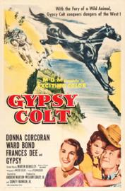 Nr.2180 --16mm-- Gypsy Colt 1953  Western / Familie speelduur 72 minuten, redelijk van kleur, Engels gesproken met Ned.ondertitels compleet met begin/end titels op spoelen en in doos