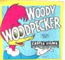 Nr.7087 --Super 8 sound - Convict Concerto Woody Wood Pecker muziek tekenfilm, Kleur Engels geluid ca 60 meter op spoel in  doos