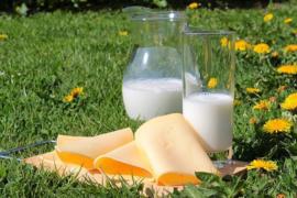 H018 --16mm-- Melk,boter en kaas mooie documentaire over vervaardiging van deze produkten, mooi van kleur en Nederlands gesproken, speelduur ca 25 min.compleet met begin/end titels op spoel en in doos