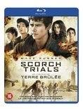 Blu-ray Maze Runner Scorch Trials 2016 Het vervolg op The Maze Runner, een van de tien best bezochte bioscoopfilms in Nederland in 2014. Blu ray