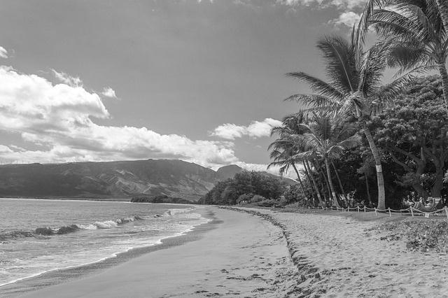 Nr.16491 --16mm-- korte reisfilm,,mooi Hawai,, zwartwit Engels gesproken compleet met begin/end titels speelduur 10 min. op spoel en in doos
