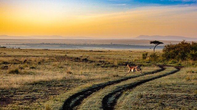 Nr.16232 --16mm sound-- Johannesburg S.Afrika, Stars That Shine Forever, mooie kleuren documentaire goed van kleur en Engels gesproken, speelduur 25 minuten compleet met begin/end titels  op spoel en in doos