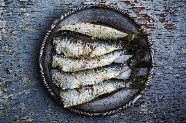 H115 --16mm-- Sardine vangst in Maine mooie documentaire over vangen en inblikken van sardine's speelduur ca.20 min.mooi van kleur en Nederlands gesproken