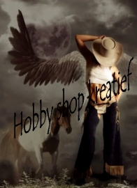 Country / cowboys / Indianen