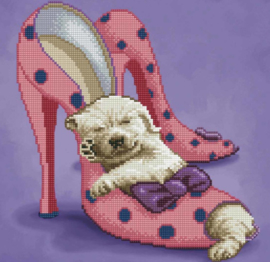 hondje in pumps