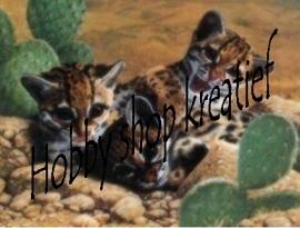 PE 0022 Drie tijgertjes