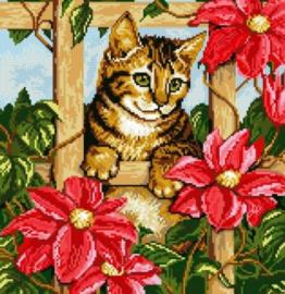 AB Kat met bloemen