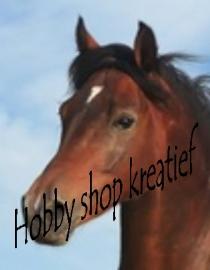 SS 0009 Bruin paard