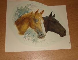 Transfer: Zwarte+roswitte paardenkoppen medium